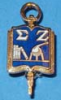 Sigma Zeta Gold Pin